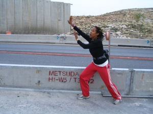 Stop the Separation Wall!